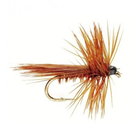 Sm Brown Fluttering Cadd