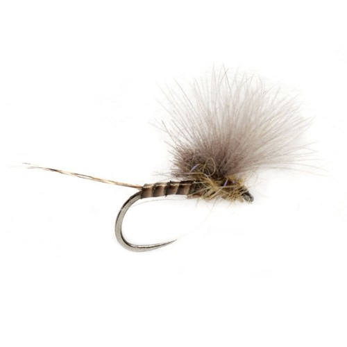 McPhail CdC Olive Quill