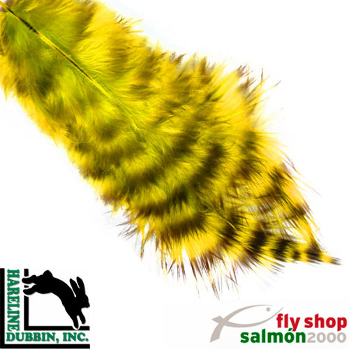 Plumas Grizzly Soft Hackle yelow