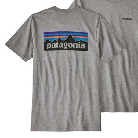Camiseta Patagonia gris