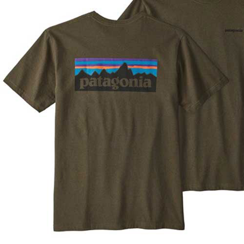 Camiseta Patagonia marrón