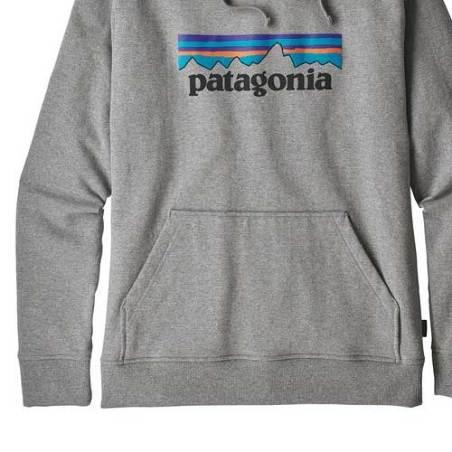 Sudadera Patagonia gris