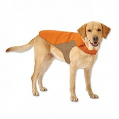 dog jacket brown