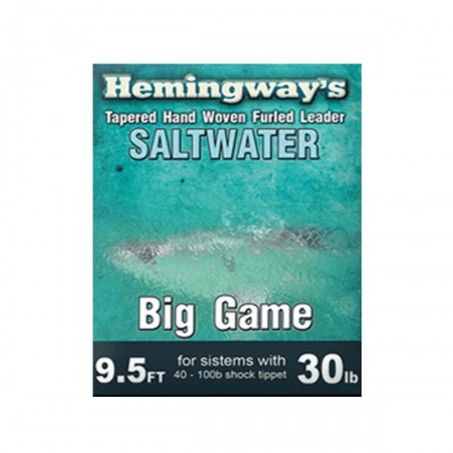 Saltwater Hemingway's