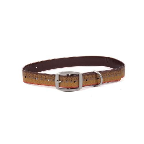 Salty Dog Collar