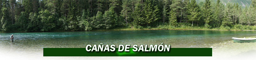 Cañas de salmon